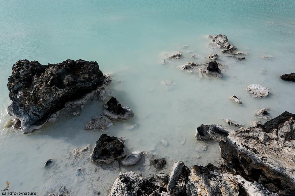 blue lagoon | Blaue Lagune