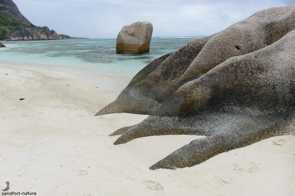 Seychelles-5991.jpg