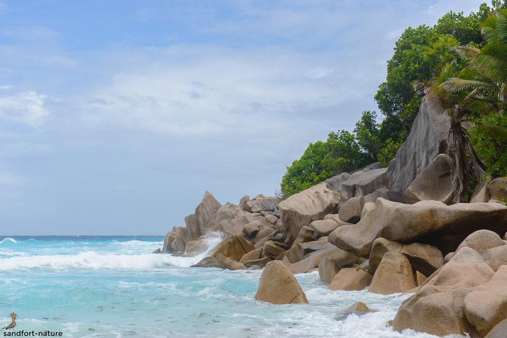 Seychelles-6090.jpg