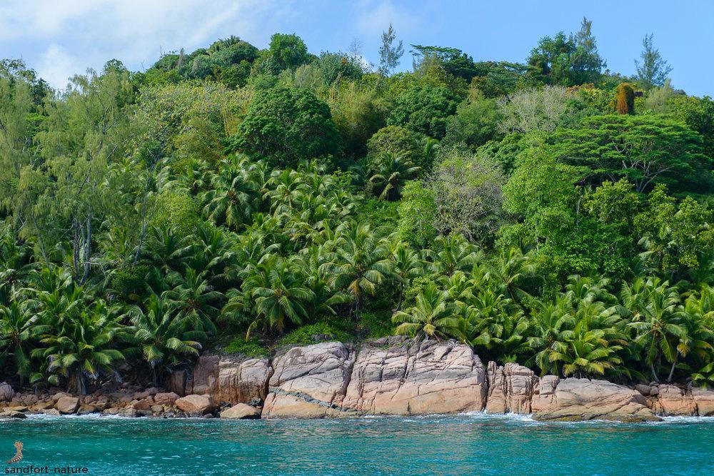 Seychelles-6108.jpg