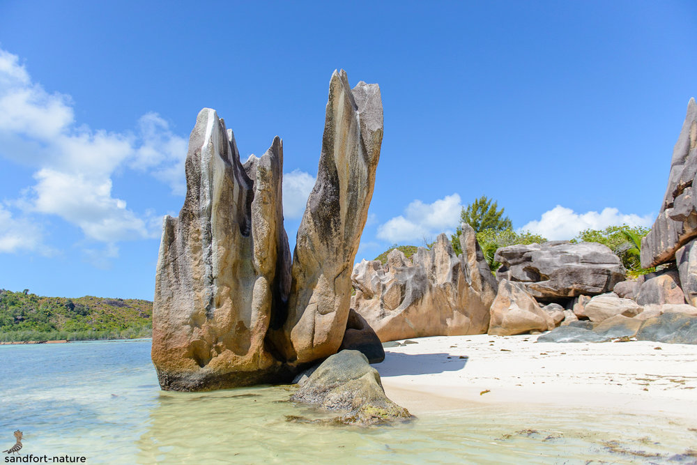 Seychelles-7013.jpg