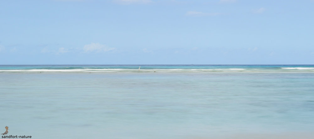 Seychelles-7447.jpg