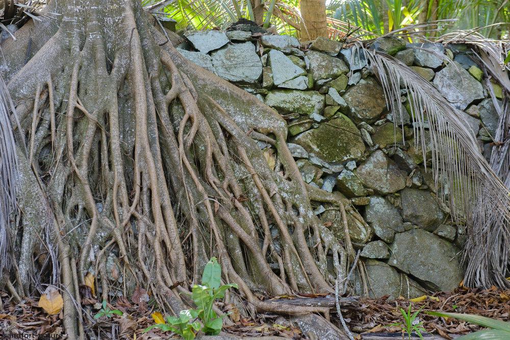 Seychelles-8104.jpg