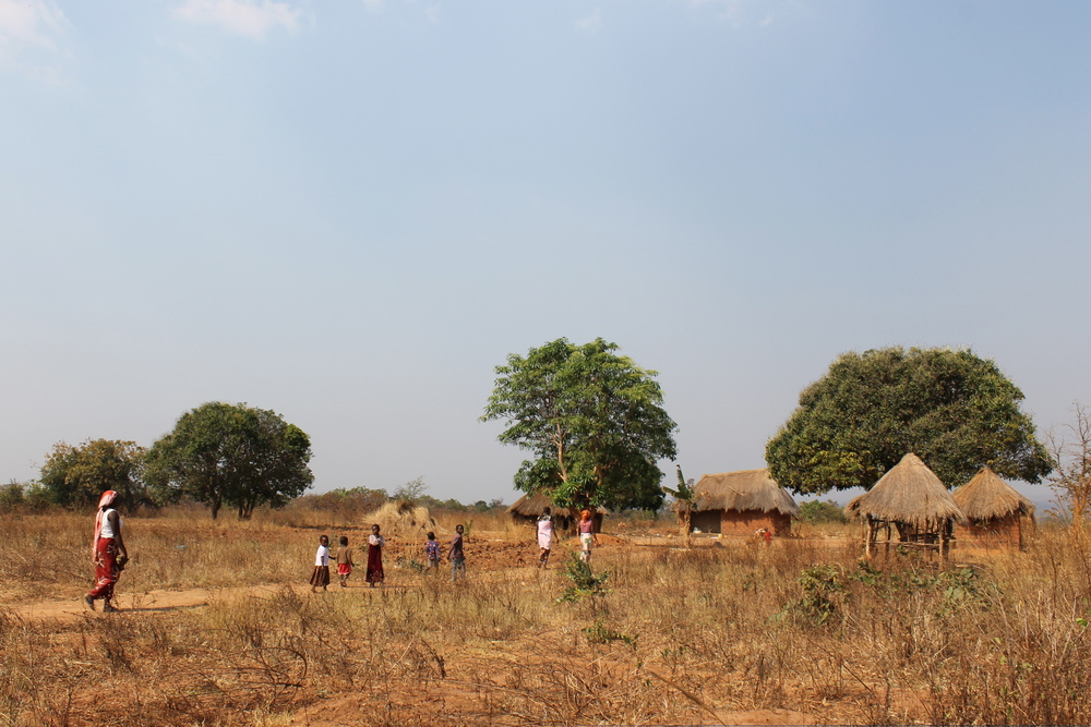 A house complex (kitchen, main house, kids house) for a family in Muchochoma Village