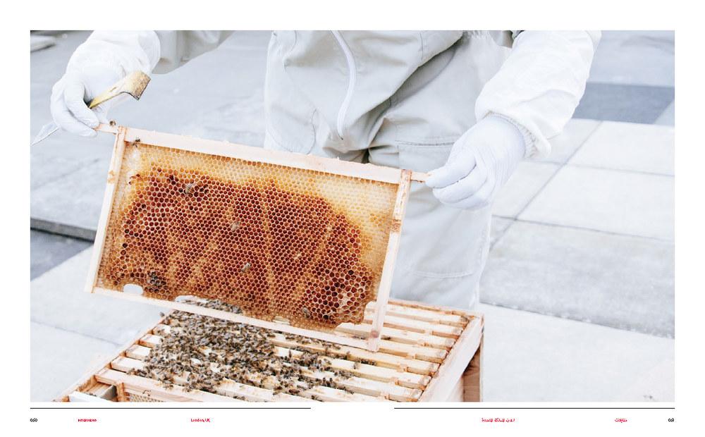 Brownbook - Beekeepers_Page_3.jpg