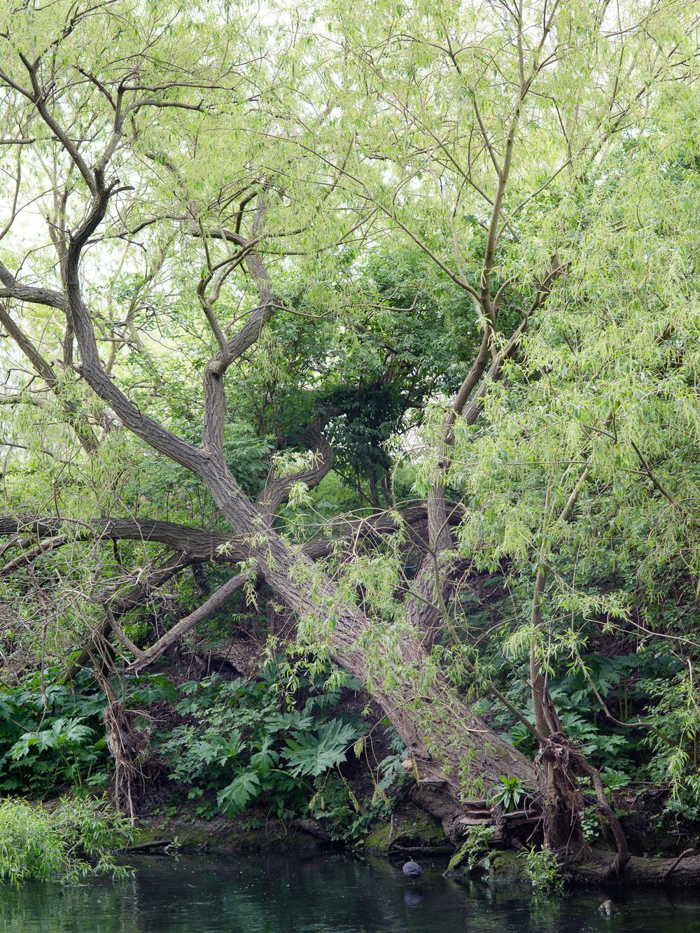 Canal_Freya-Najade-34.jpg
