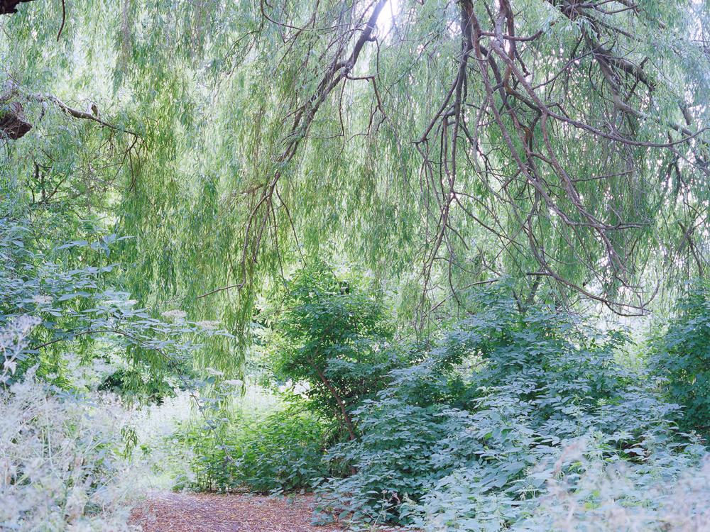 Canal_Freya-Najade-41.jpg