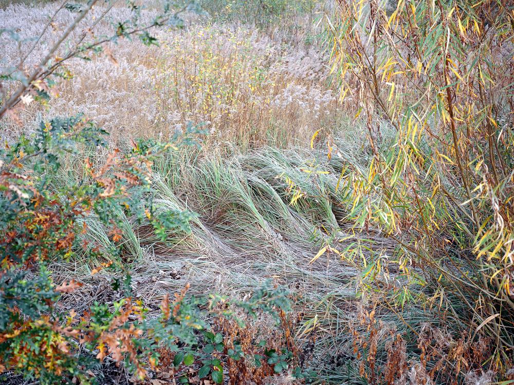 Canal_Freya-Najade-62.jpg