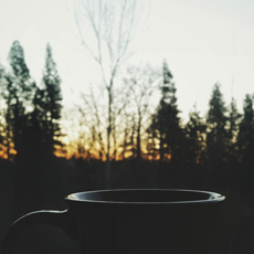 tea and sunrise, Beaverton