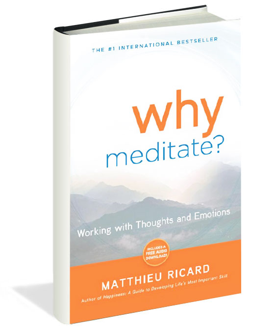 bk_cover_why_meditate.jpg