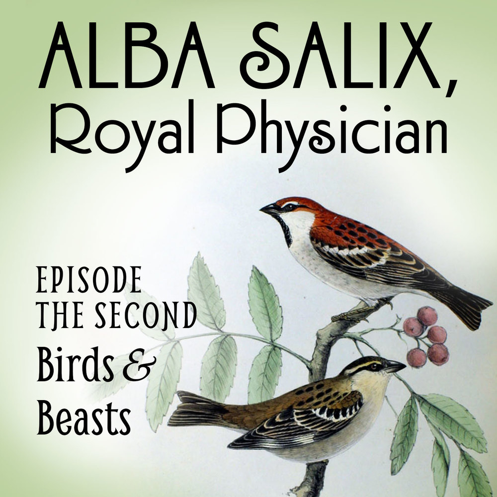 Episode the Second: Birds & Beasts