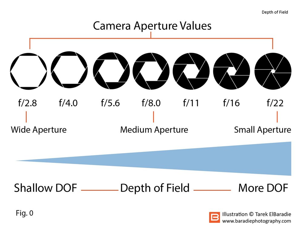 The lower the aperture number the more open the aperture iris will be. The more you close the aperture down, the more you have in focus but with less available light.