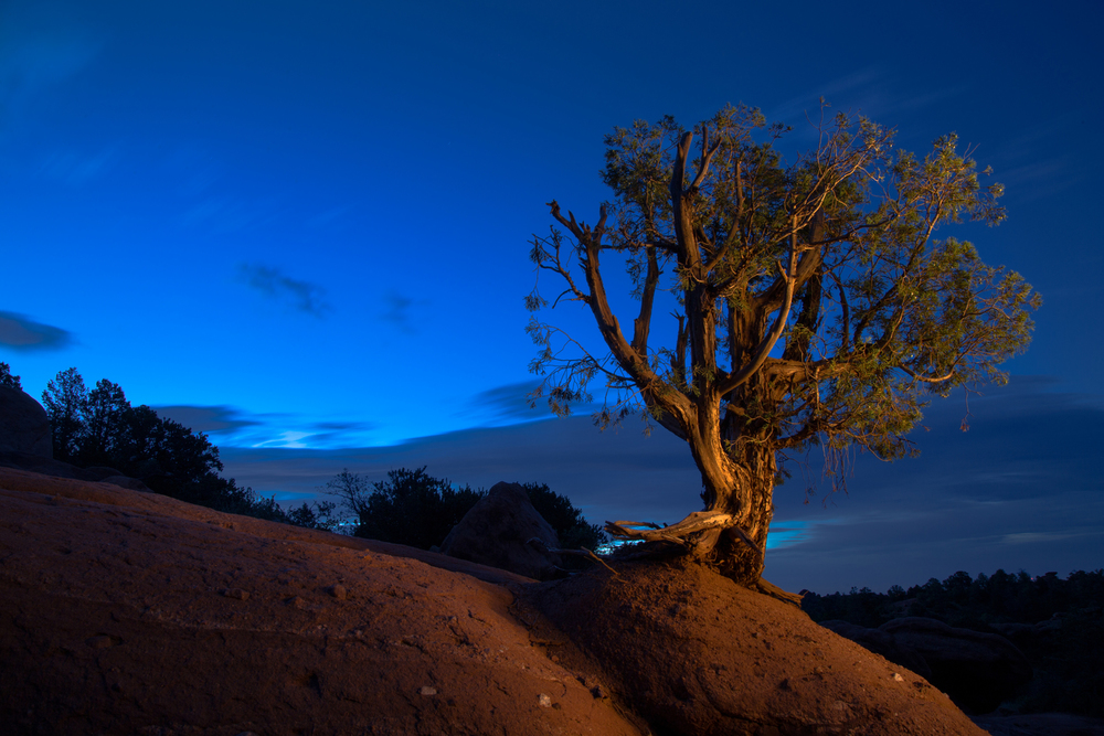 One of my first landscape light paintings after putting into use tips from Dave Black.