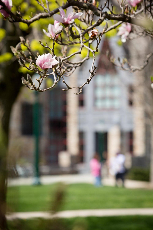 Campus Life-54.jpg