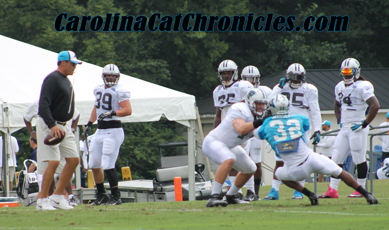 Panthers 2014 Training Camp