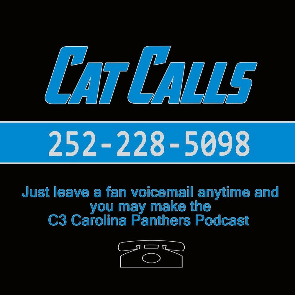 Cat Calls.jpg