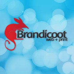 brandicoot