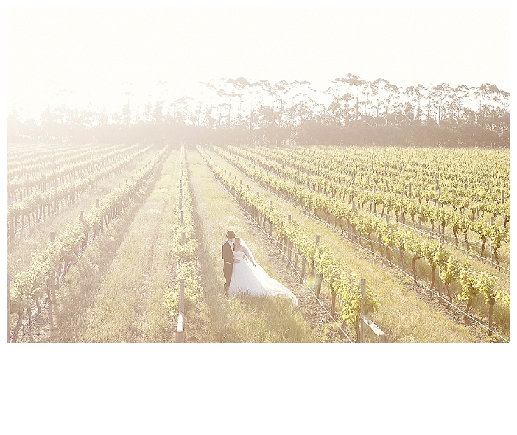 Michelle & Jason | Laurance Wines