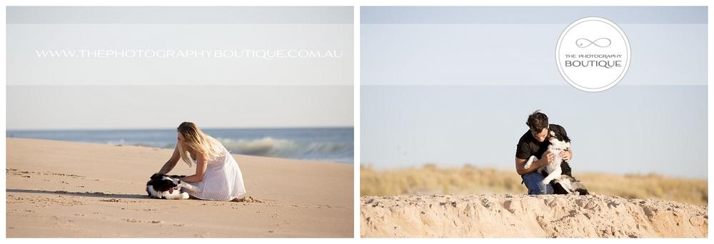 Beach Pet Photographer