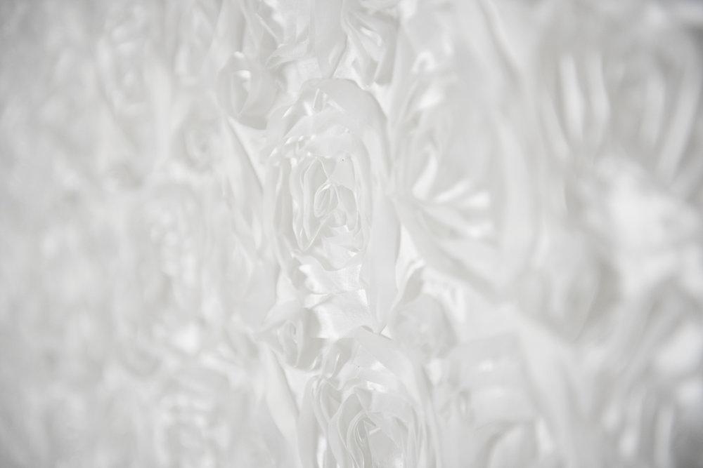 White Rosette 2