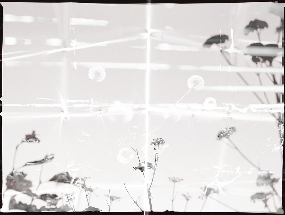 Untitled23.jpg