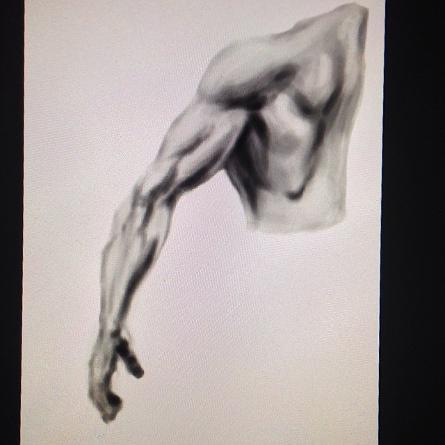 #anatomy #arm #study #art #illustration #painting #drawing #sketching #muscles