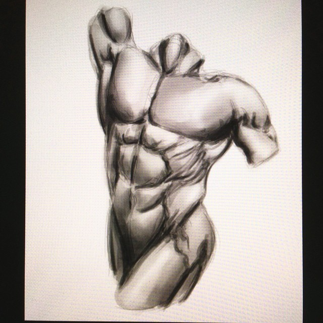 #anatomy #male #torso #art #illustration #drawing #painting #study #sketchbook #sketching