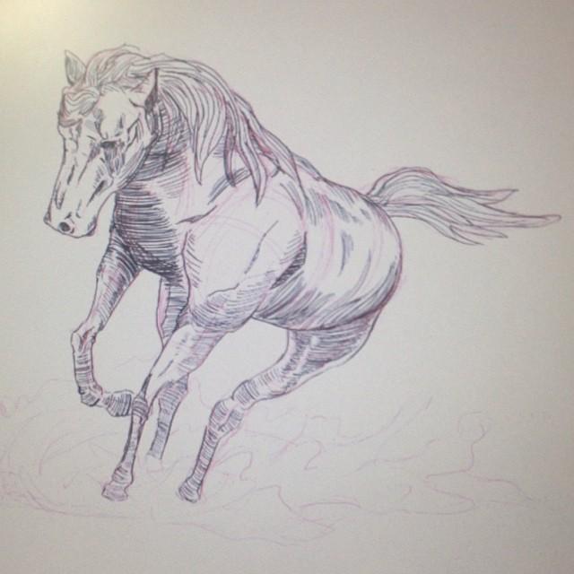 #wip #art #illustration #drawing #horse