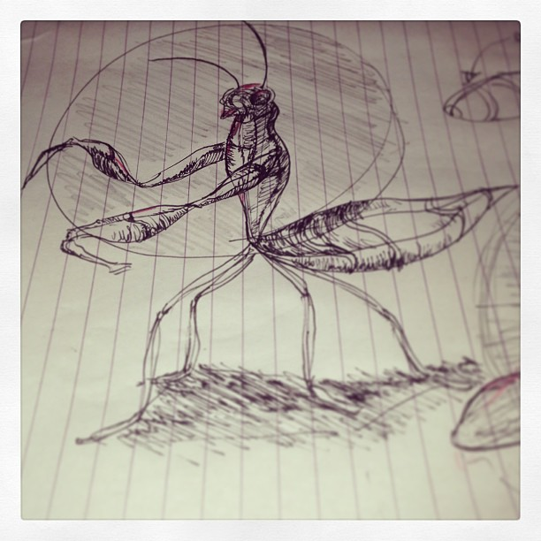 #insect #art #illustration #drawing