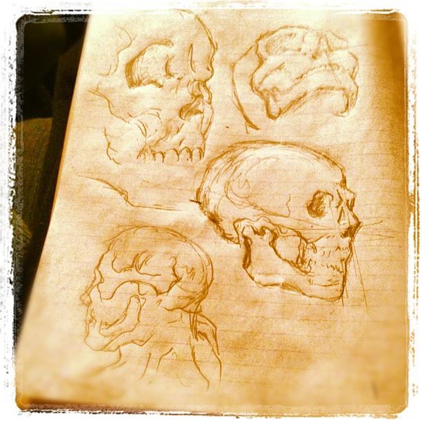 #illustration #art #drawing #skull (Taken with  instagram )