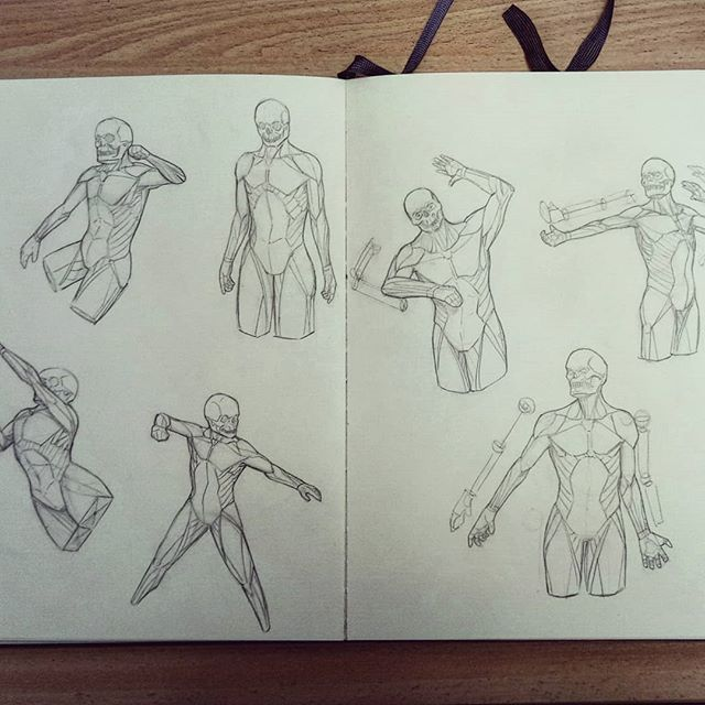 #anatomy #turnaround #pose #arms #hands #torso #artworks #art #drawing #sketchbook #sketch #study #illustration #instaart #picoftheday #anatomyart #dailysketch #asketchaday #draweveryday #muscles #artbook