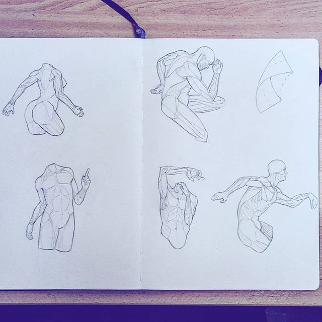 #anatomy #hands #pose #arms #torso #artworks #art #drawing #sketchbook #sketch #study #illustration #instaart #picoftheday #anatomyart #dailysketch #asketchaday #draweveryday #muscles #artbook #artistsoninstagram #2019