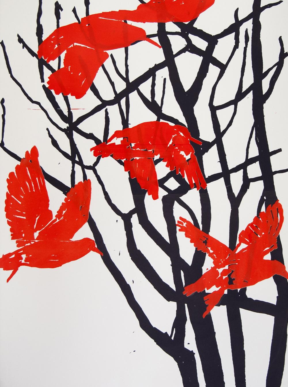Red knots.jpg