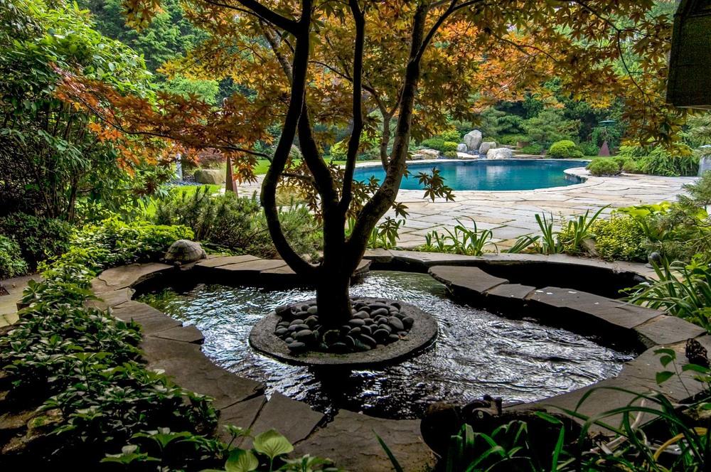 002-255_060622_Zen Assoc Pool.jpg