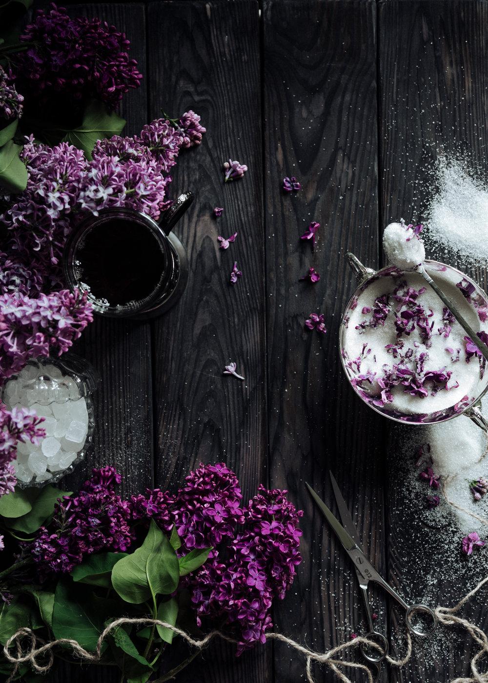 lilac-033_.jpg