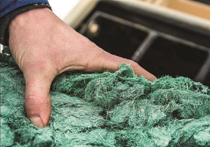 GreenPatch Hydroseeding