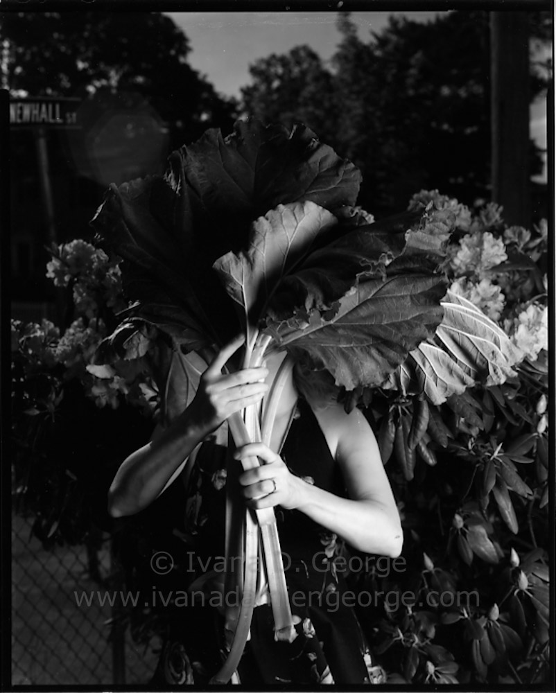 springgarden2015-032.jpg