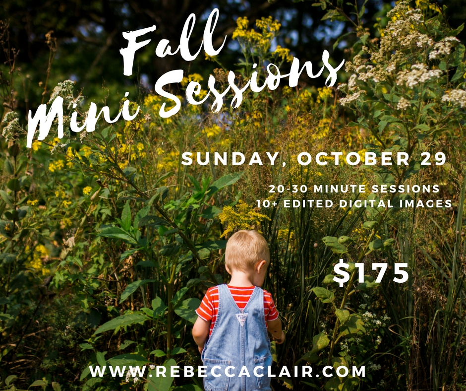 Kansas-City-Fall-Mini-Sessions-Rebecca-Clair-Photography-Kansas-City-Lifestyle-Photographer.jpg