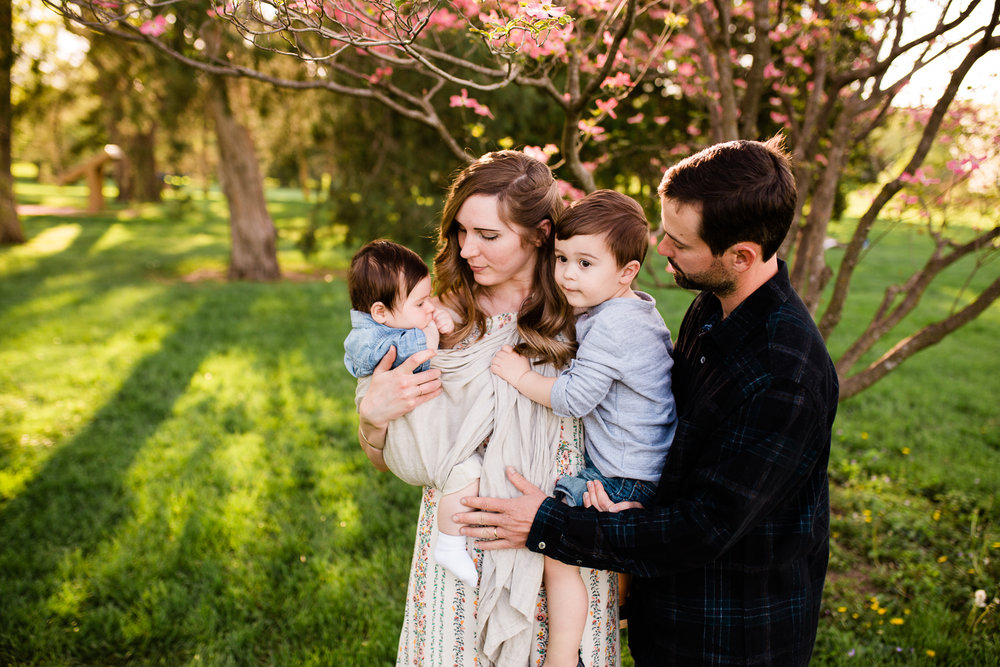 Family photos at Loose Park under the flowering trees, golden hour session, Kansas City family photographer, Rebecca Clair photography