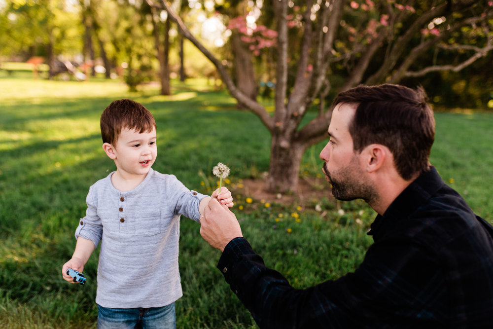 Father and son with dandelions, golden hour session at Loose park, mommy and me session, Kansas City family photographer, Rebecca Clair Photography