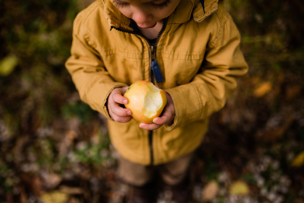Boy holding an apple in the fall, candid family photos in Kansas City, Kansas City fall family photos, Kansas City November mini sessions