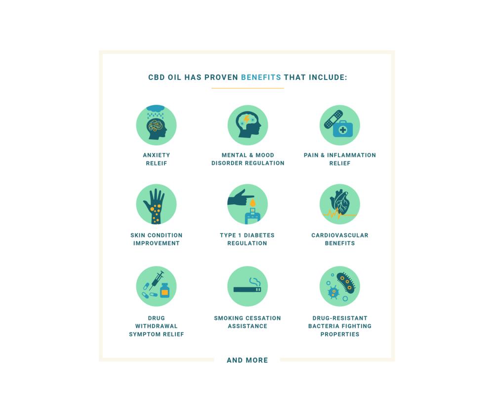 CBD Central : infographics
