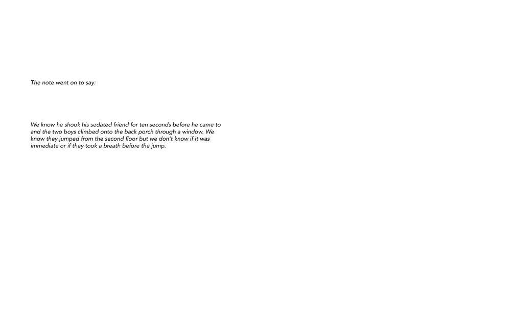 Vivian Ewing_Dry Grass Crackling-page-008.jpg