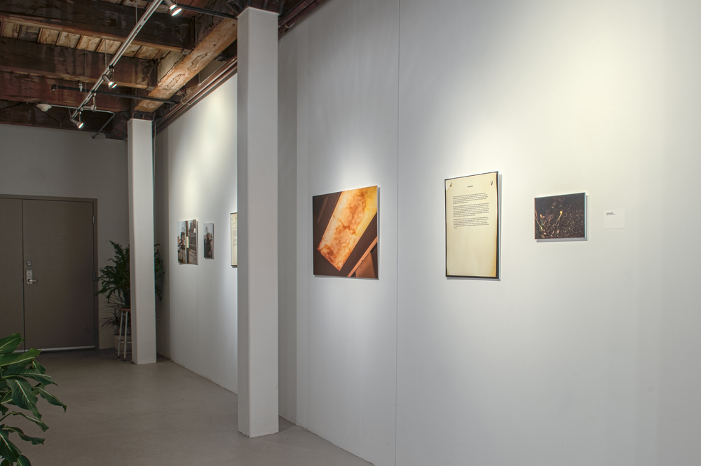 LinesOfSight_Installation_08.jpg