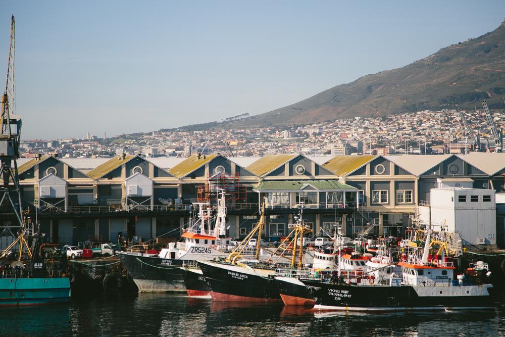SouthAfricaForWebsite-64.jpg