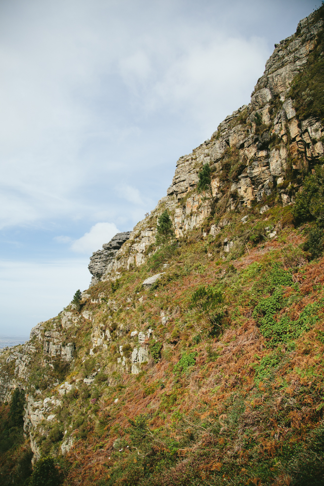 SouthAfricaForWebsite-71.jpg