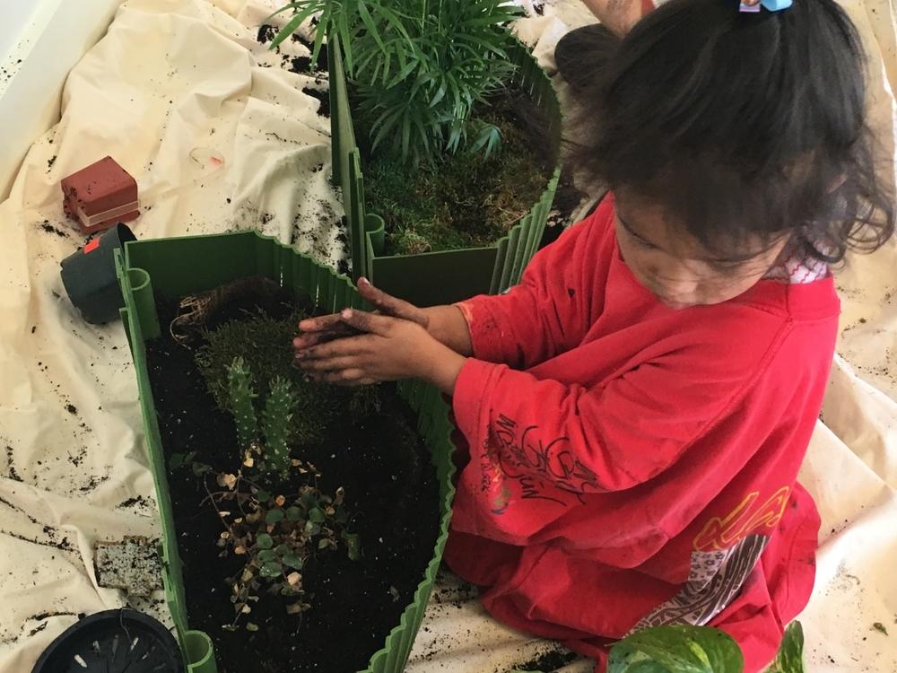 planting 5 (xxx).JPG