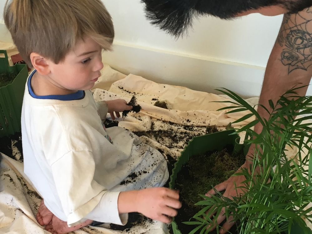 planting 4.JPG