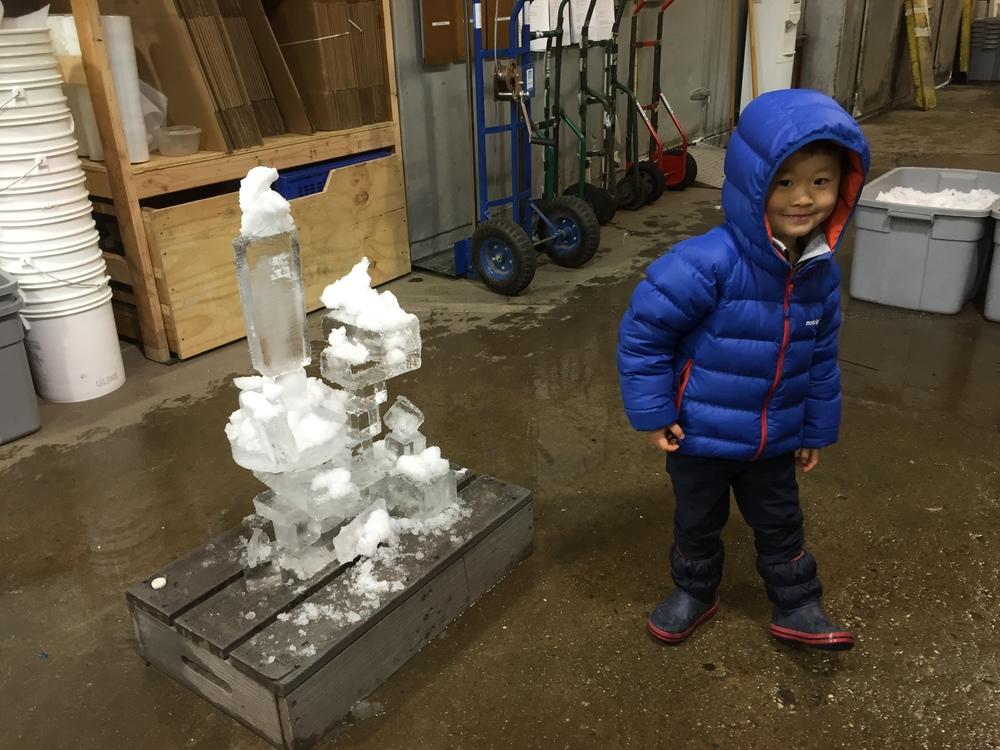 ice 12.jpg