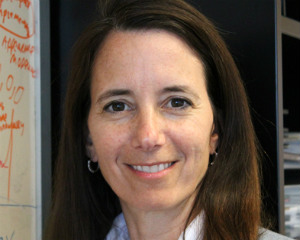 Kristin Dana Rutgers University  Professor NYC, NY, U.S.